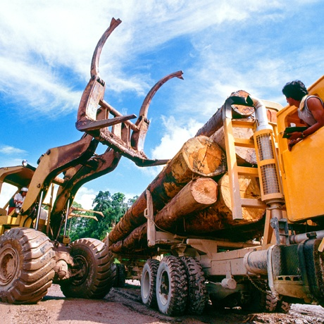 Logging Equipment Financing