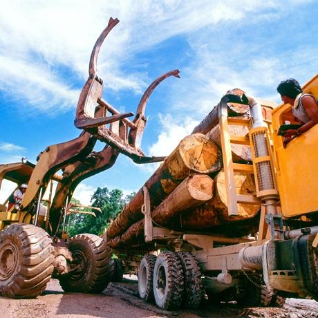 Logging Equipment Financing